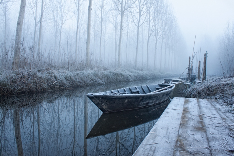 Heart-warming Frost - dedicated